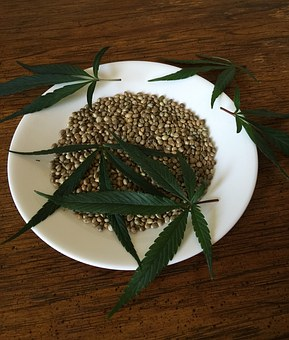 growing marijuana from seeds